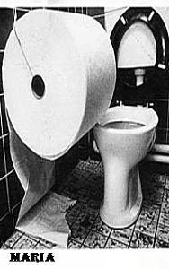 اضغط على الصورة لعرض أكبر  الاســـم:after_curry_toilet_roll_copy.jpg المشاهدات:962 الحجـــم:25.3 كيلوبايت الرقم:36117