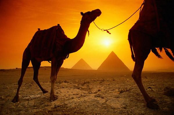 اضغط على الصورة لعرض أكبر  الاســـم:Egypt 3.jpg المشاهدات:11668 الحجـــم:73.6 كيلوبايت الرقم:47084