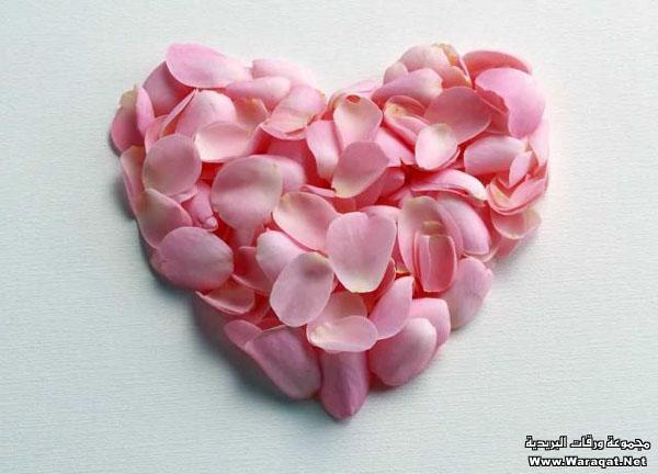 اضغط على الصورة لعرض أكبر  الاســـم:Pretty-hearts1[1].jpg المشاهدات:1428 الحجـــم:60.8 كيلوبايت الرقم:65149