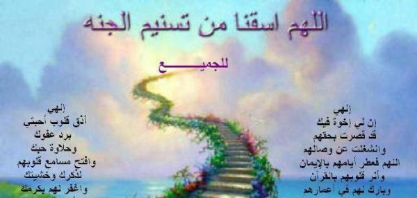 السلام عليكم ورحمه الله وبركاته ********************** 1 – مشروع